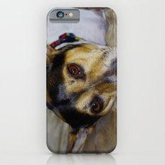 Terrier iPhone 6s Slim Case