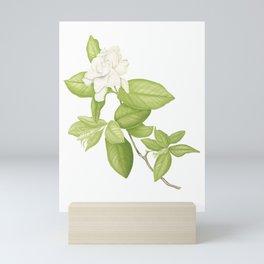Gardenia Flower Mini Art Print