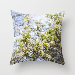 Pear Blossoms of Sonora Throw Pillow