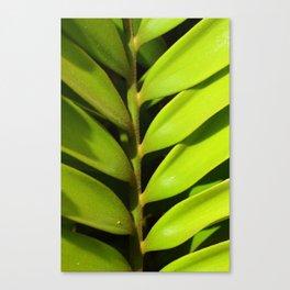 Vegetable balance - Green design Canvas Print