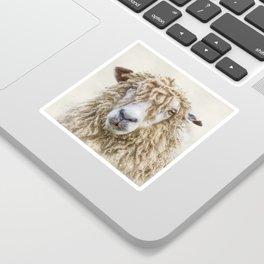 Longwool Sheep Sticker