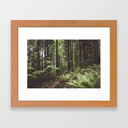 Woodland - Landscape and Nature Photography Framed Art Print