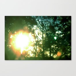 Midsummer Canvas Print