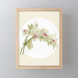 Orchidea Framed Mini Art Print