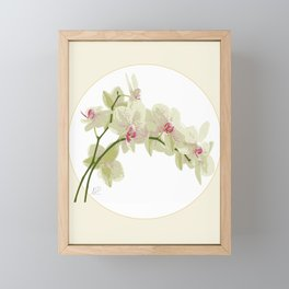 Orchidea Framed Mini Art Print