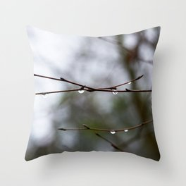 After The Thaw Throw Pillow