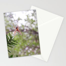 orb weaver spider and bokeh Stationery Cards