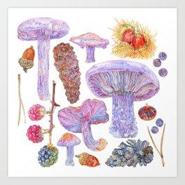 Winter Wood Blewits Art Print