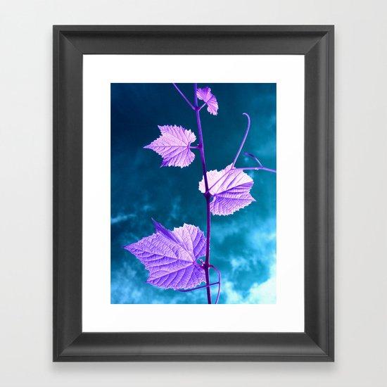 violet wine leafs II Framed Art Print