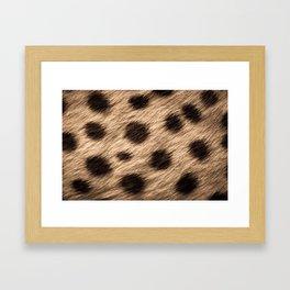 Safari Gepard Fur Framed Art Print