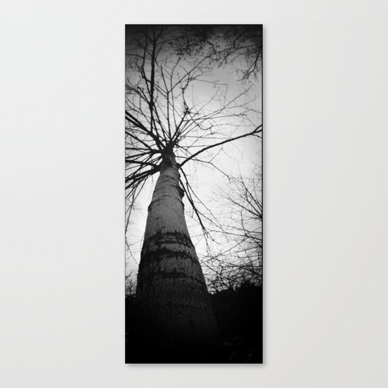 pantree Canvas Print