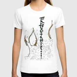 Transfiguration T-shirt