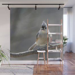 Titmouse Frown Wall Mural