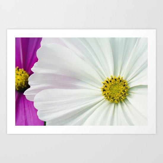 Sommerblumen Art Print