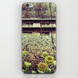 Just some railroad tracks iPhone Skin