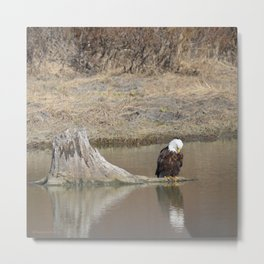 Self Reflection! Metal Print