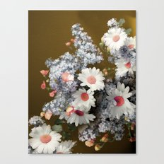 Autumn daisies Canvas Print