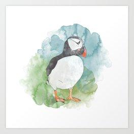 Iceland Puffin Art Print