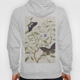 Butterflies and Ferns Hoody