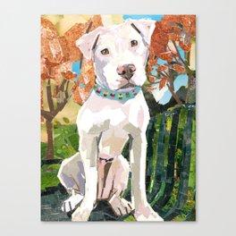 Fitz Canvas Print