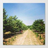 farm Canvas Prints featuring Farm by Saba Hazaveh