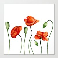 poppies Canvas Prints featuring Poppies by Julia Badeeva