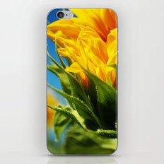sunflower take 2. iPhone & iPod Skin