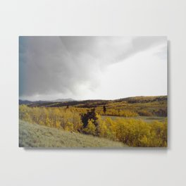 Feeling Small in a Very Good Way Metal Print