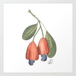 Cashew Art Print