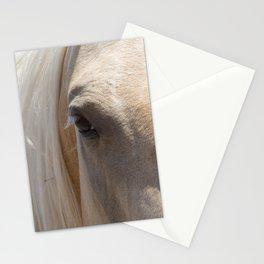 Palomino Horse Face Stationery Cards