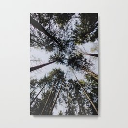 The Forest Canopy Metal Print