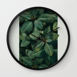 Growth III Wall Clock