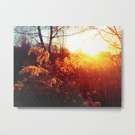 Being.In.The.Sun Metal Print