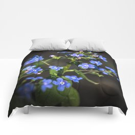 Forget-me-not Comforters
