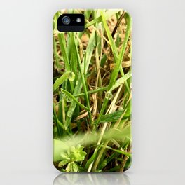 Grass In Morning Dew iPhone Case