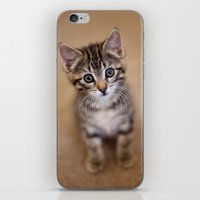 minnie iPhone & iPod Skins featuring Minnie by Mike Girod