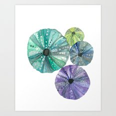 Hawaiian Sea No. 2 Sea Urchins Art Print