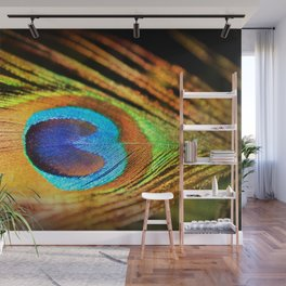 Peacock Feather, Photography Art Print Wall Mural