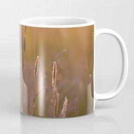 Arnica medicinal plant in a summer meadow Coffee Mug