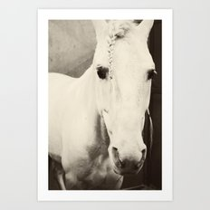 Rodeo Queen Art Print