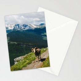 Rocky Mountain Bighorn Stationery Cards