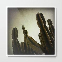 Cactus II Metal Print