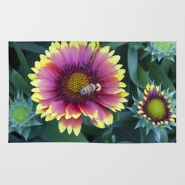Bee working in a red Sunflower Rug