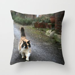 Cattitude Throw Pillow