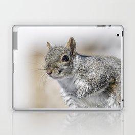Wet paw Squirrel Laptop & iPad Skin