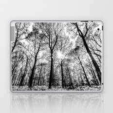 The Forests Sketch Laptop & iPad Skin