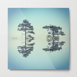 Sky Trees Metal Print