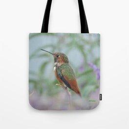 Allen's Hummingbird Sentinel Tote Bag