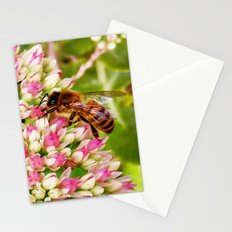 Art of Nature Stationery Cards