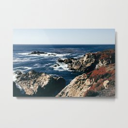 Wildflower Coast Metal Print